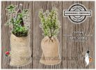Hessian Jute Burlap Printable Herb Seedling Grow Gift Favour Bags